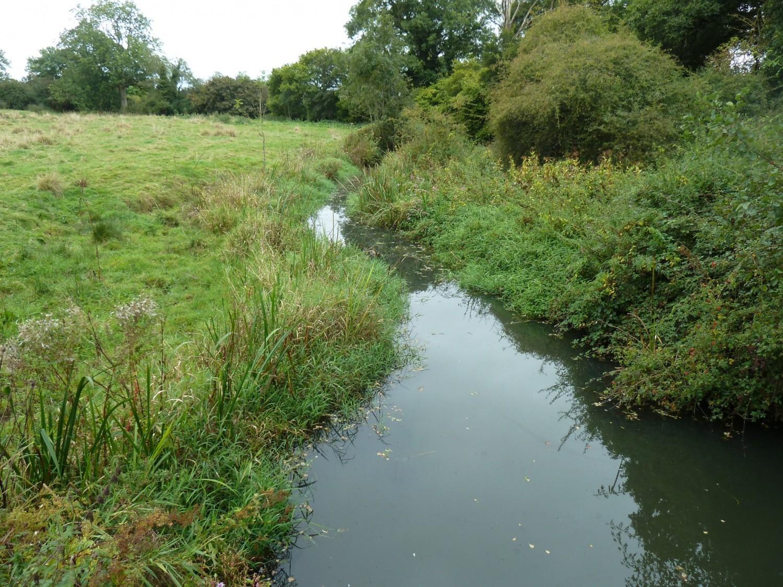 Longford Stream