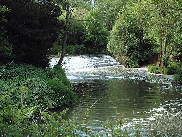 Sussex Ouse - Sutton Hall Weir