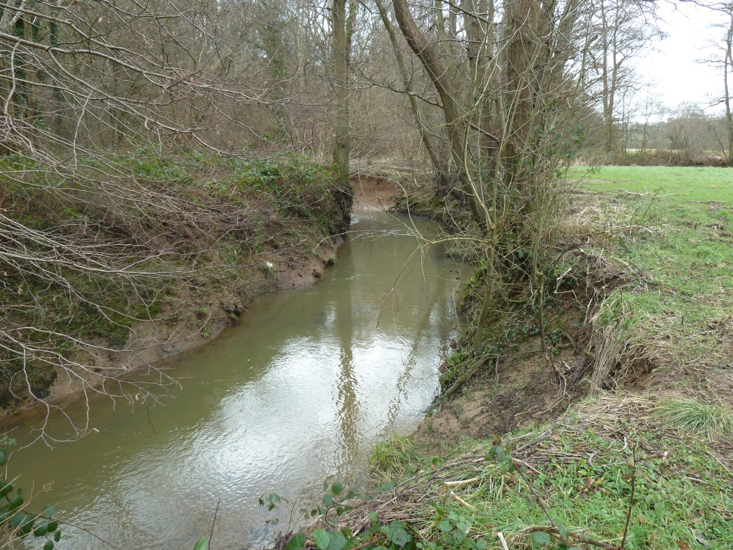 A Typical Section of the River Uck