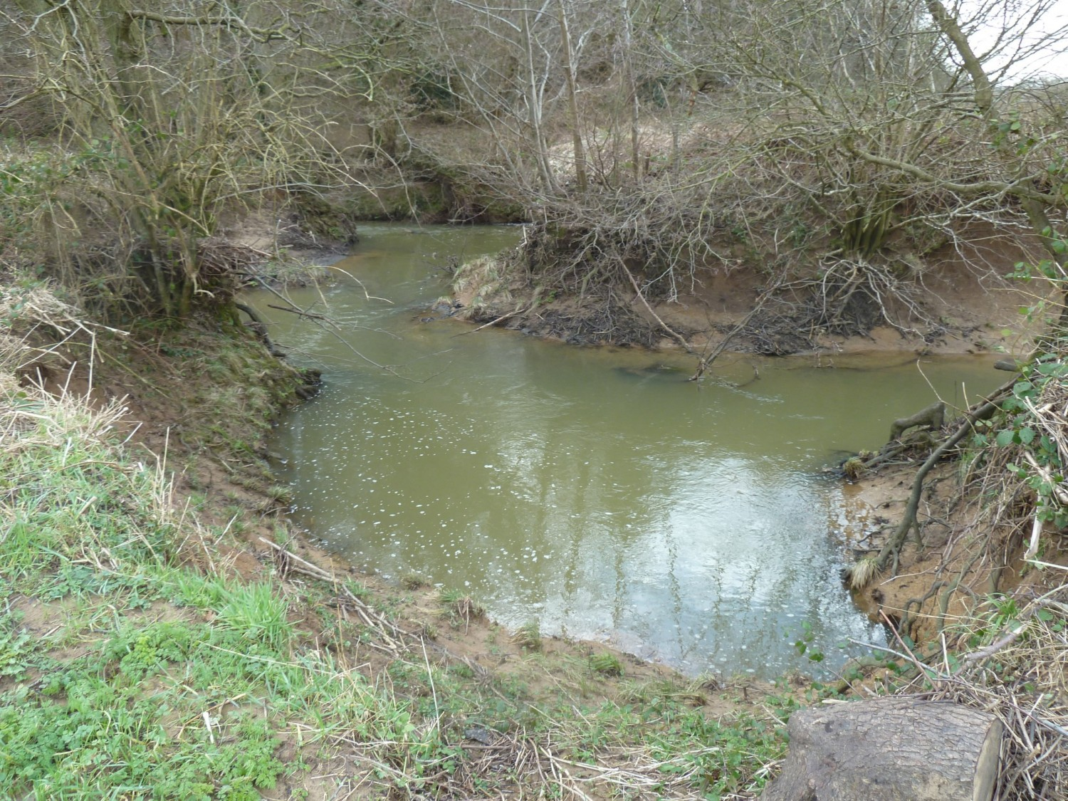 Natural Backwater Near Buxted