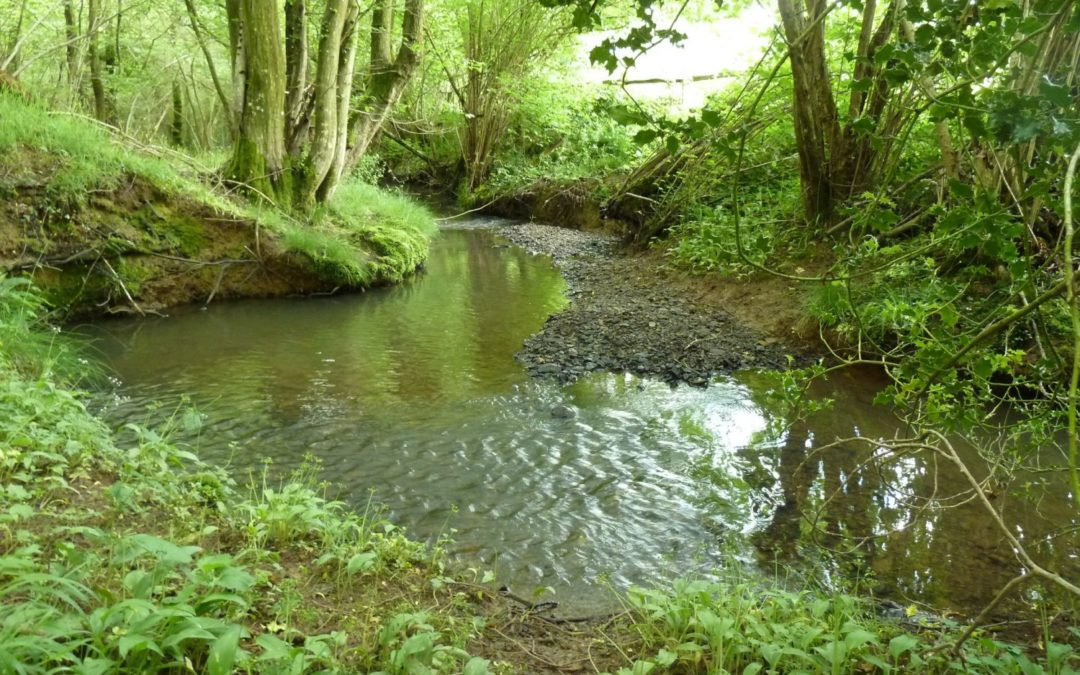 Using herbicides near streams and rivers