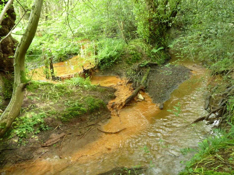 Iron Rich Input on Shortbridge Stream