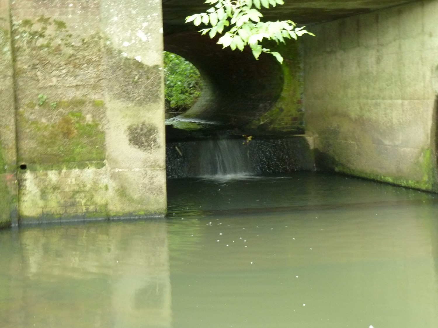 Bridge Culvert on the Longford Stream