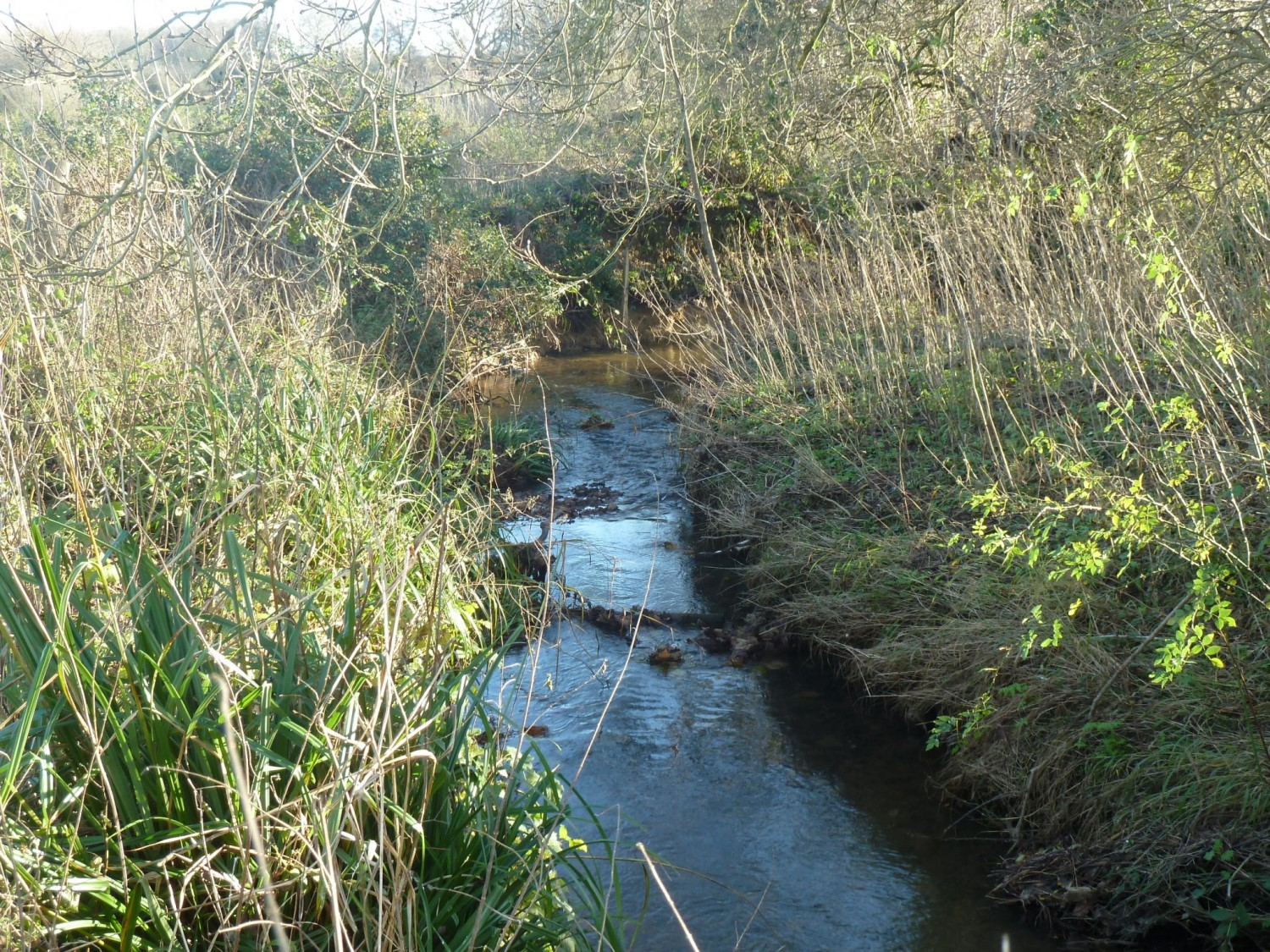 The North End Stream