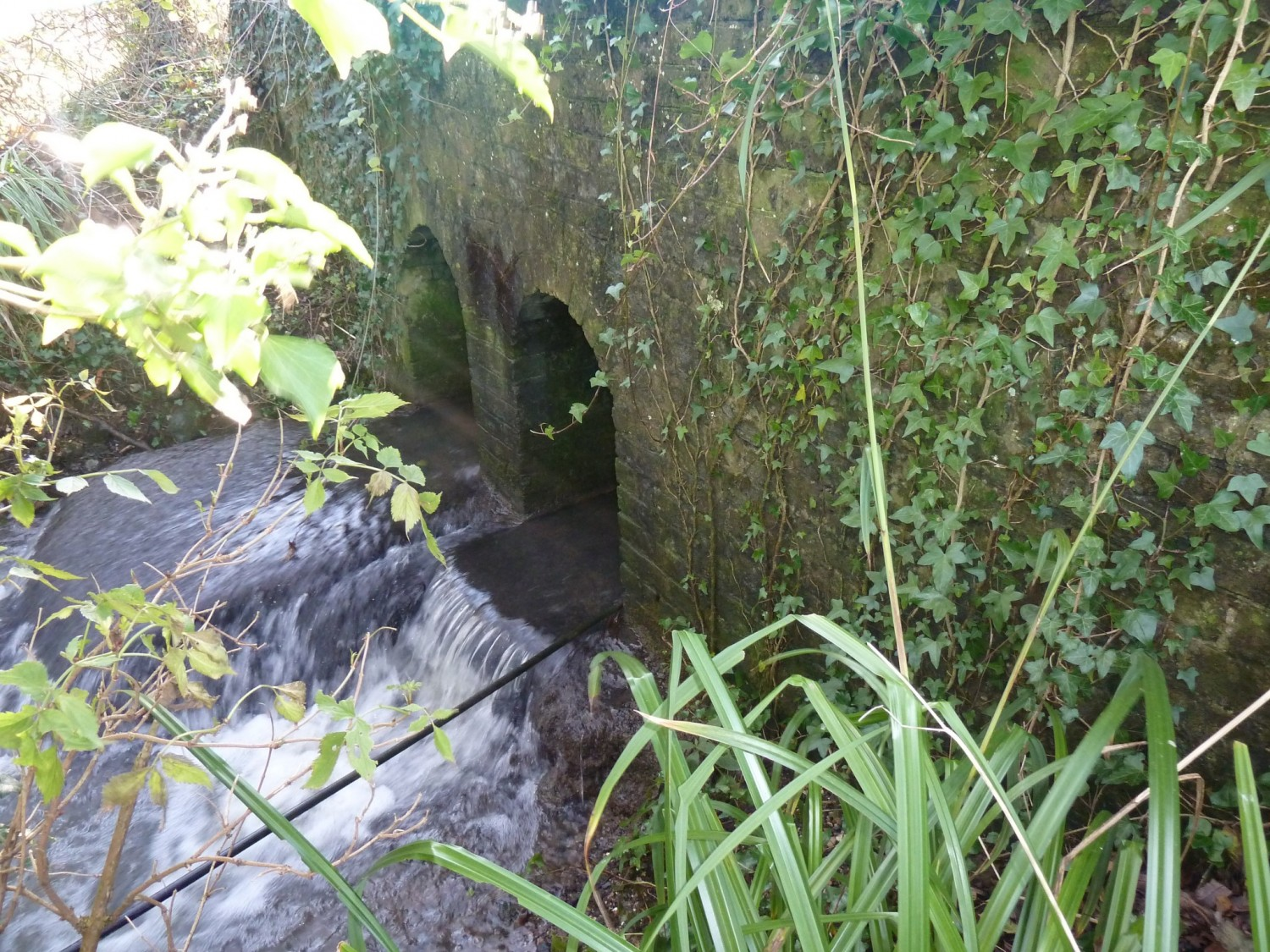 Bridge Culvert on North End Stream