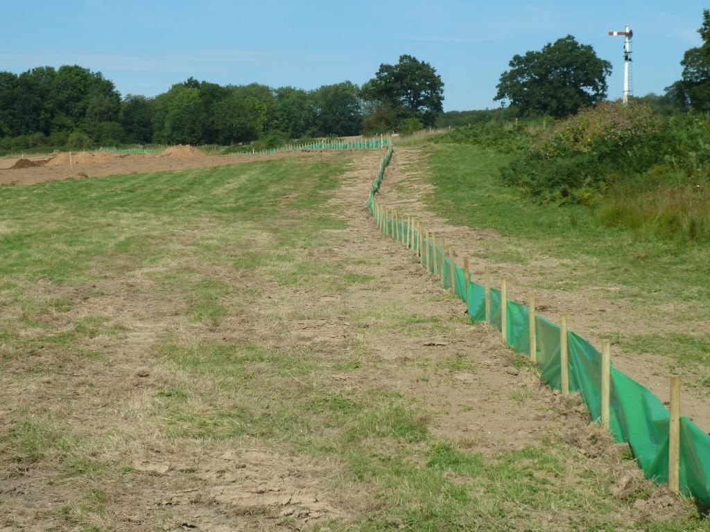 Reptile Mitigation Fencing Spring Meadow