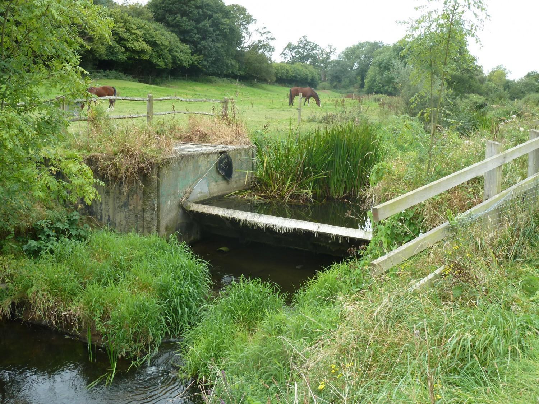 Shipley Tilting Gate