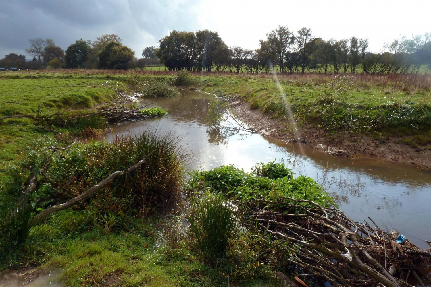 Knepp-River-Restoration-1